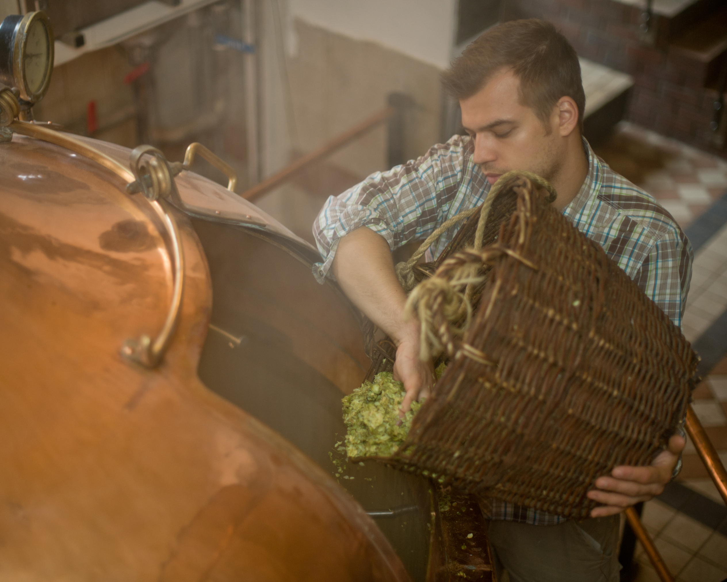 A brewer pours hop cones into a brewing kettle