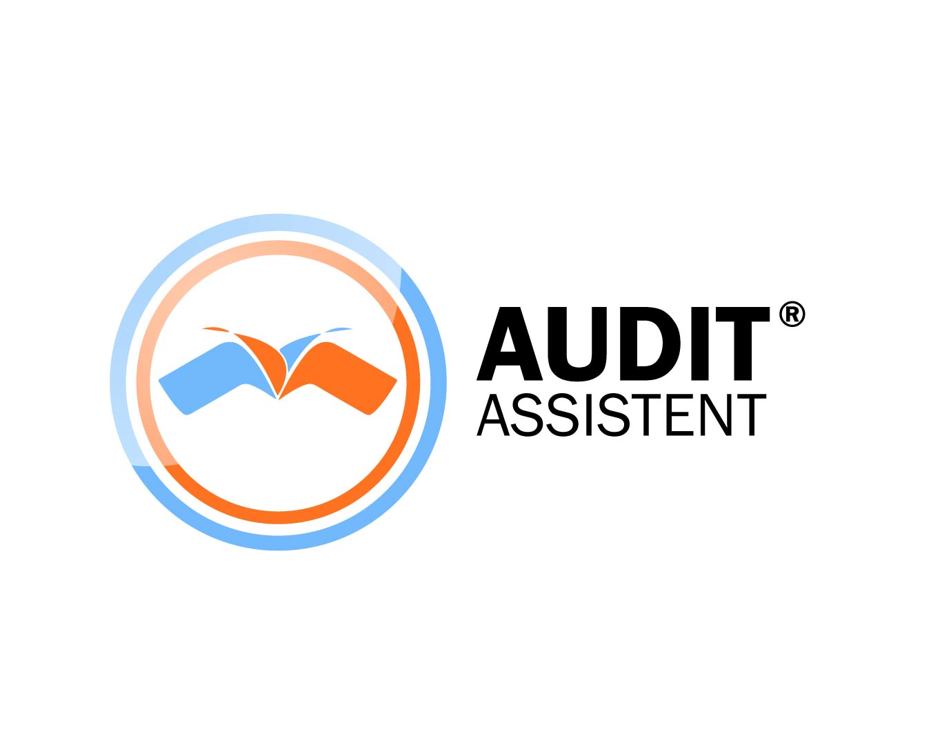 Product picture of Audit Assistent