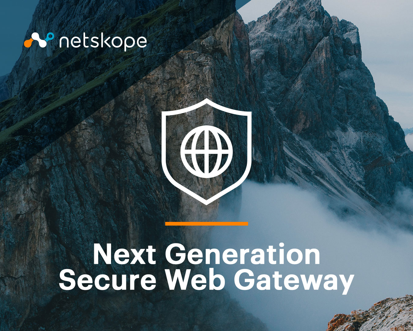 Product picture of Netskope